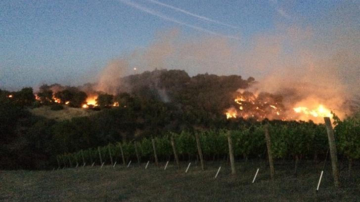 Photos courtesy: Alta Colina Vineyard & Winery