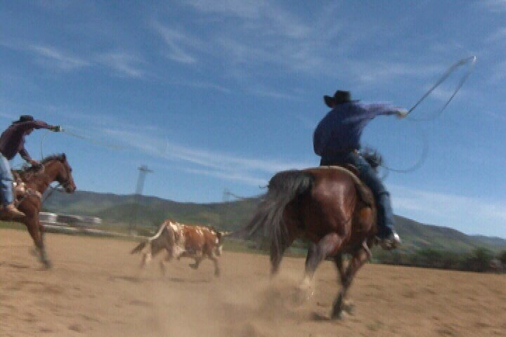 Cuesta College Rodeo Club team members practice for competition. (KSBY photo)