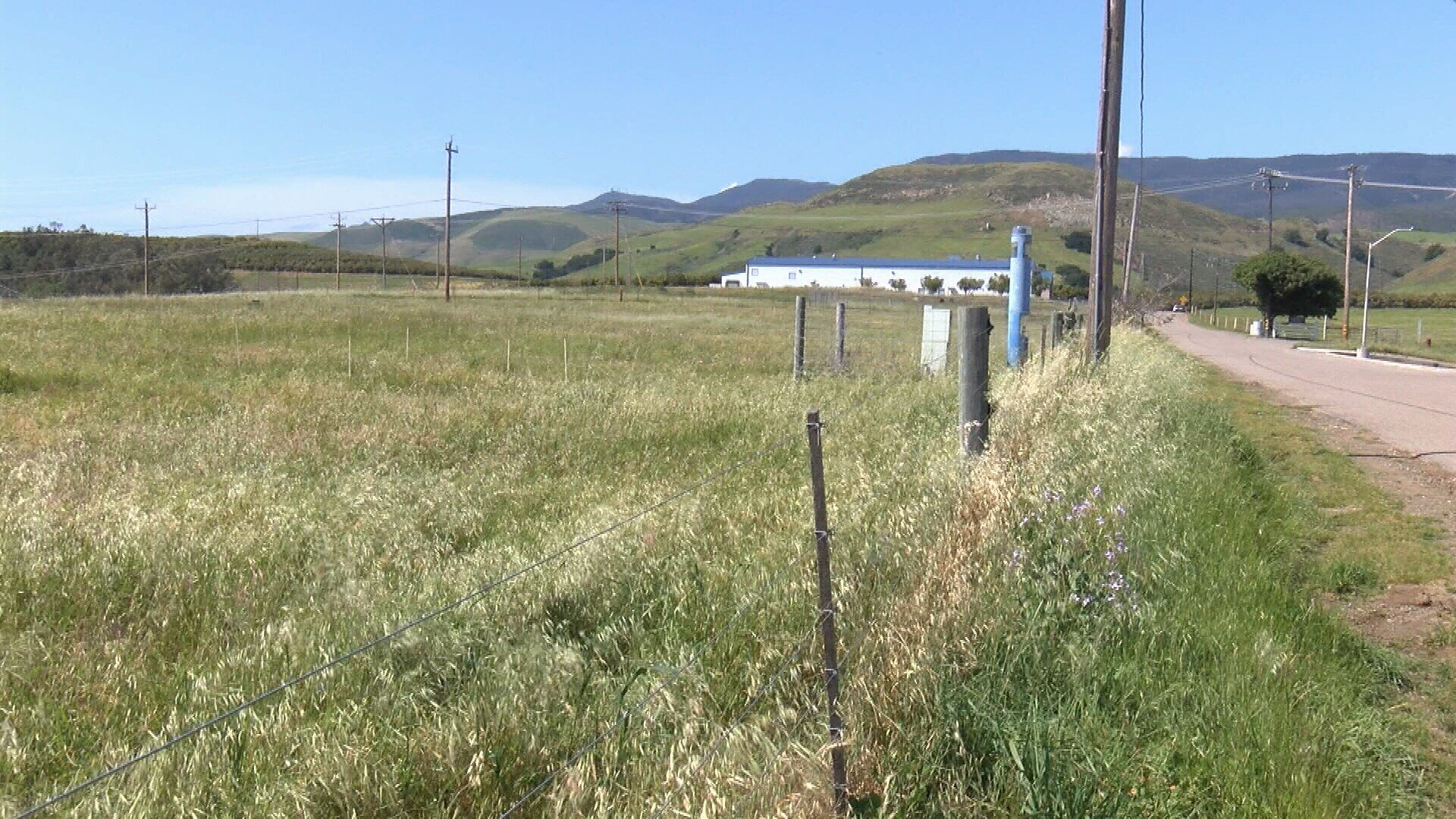 Future location of the Solar Farm on Cal Poly's campus. (KSBY photo)