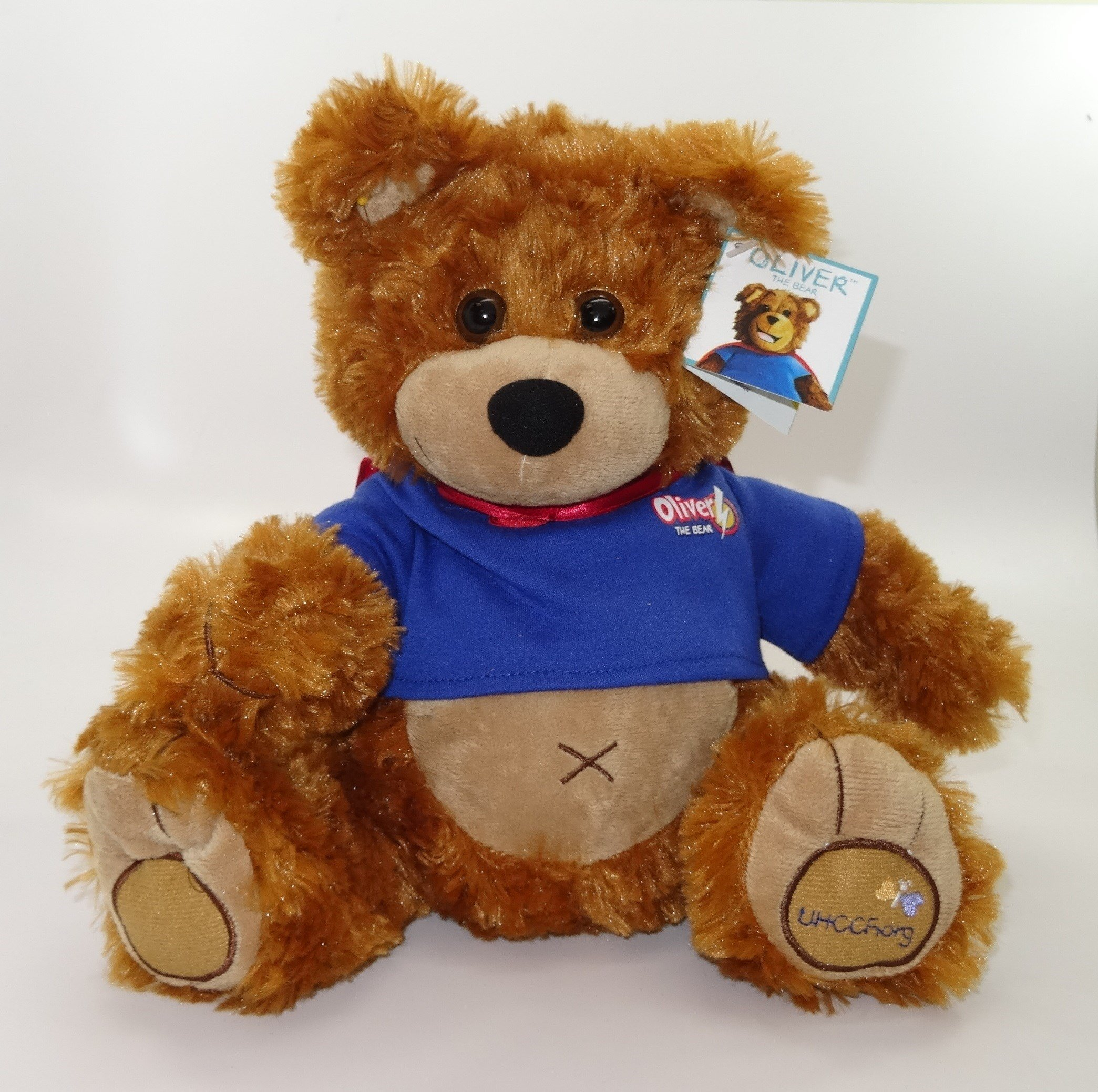 Oliver the Bear (Photo courtesy Consumer Product Safety Commission)