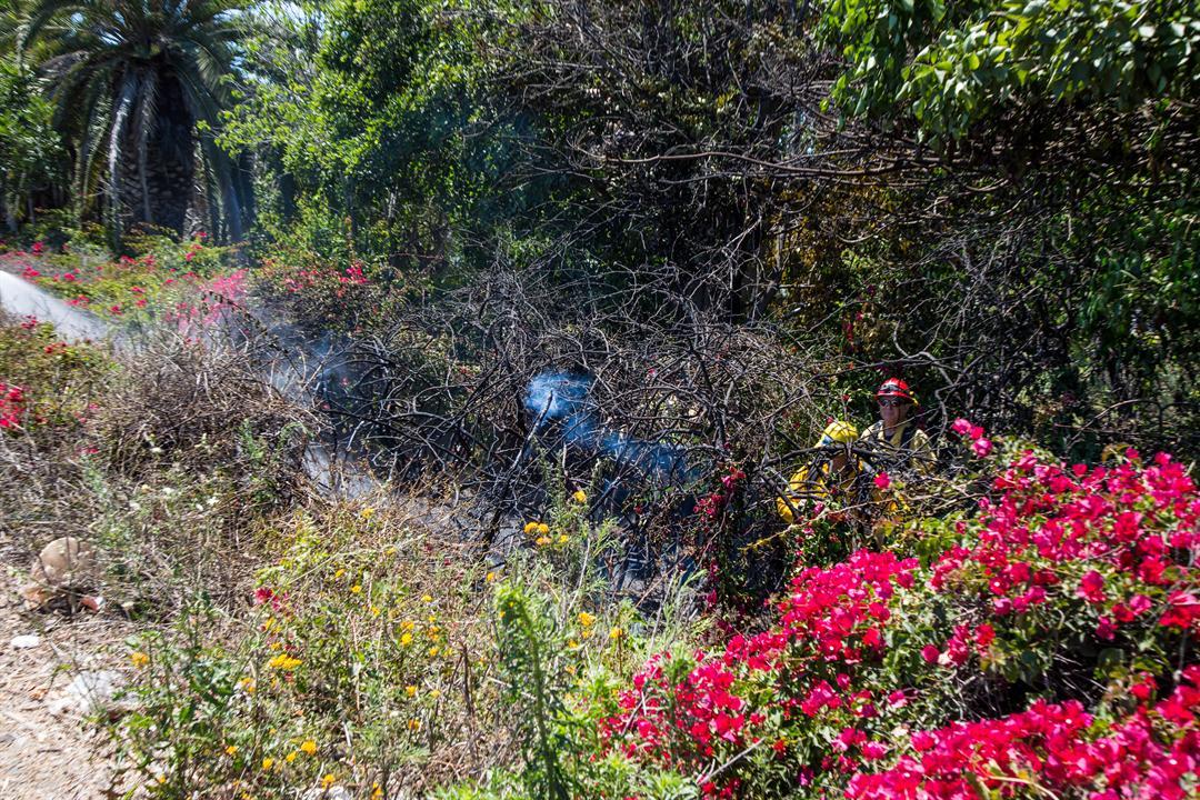 A vegetation fire broke out along Hwy 101. (Credit: Zach Warburg)