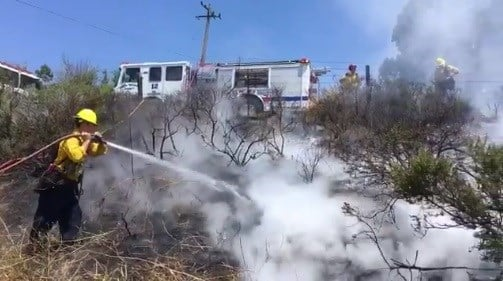Firefighters extinguish a fire along Highway 101 near El Capitan State Beach. (Photo courtesy Capt. Dave Zaniboni, Santa Barbara Co. Fire Dept.)