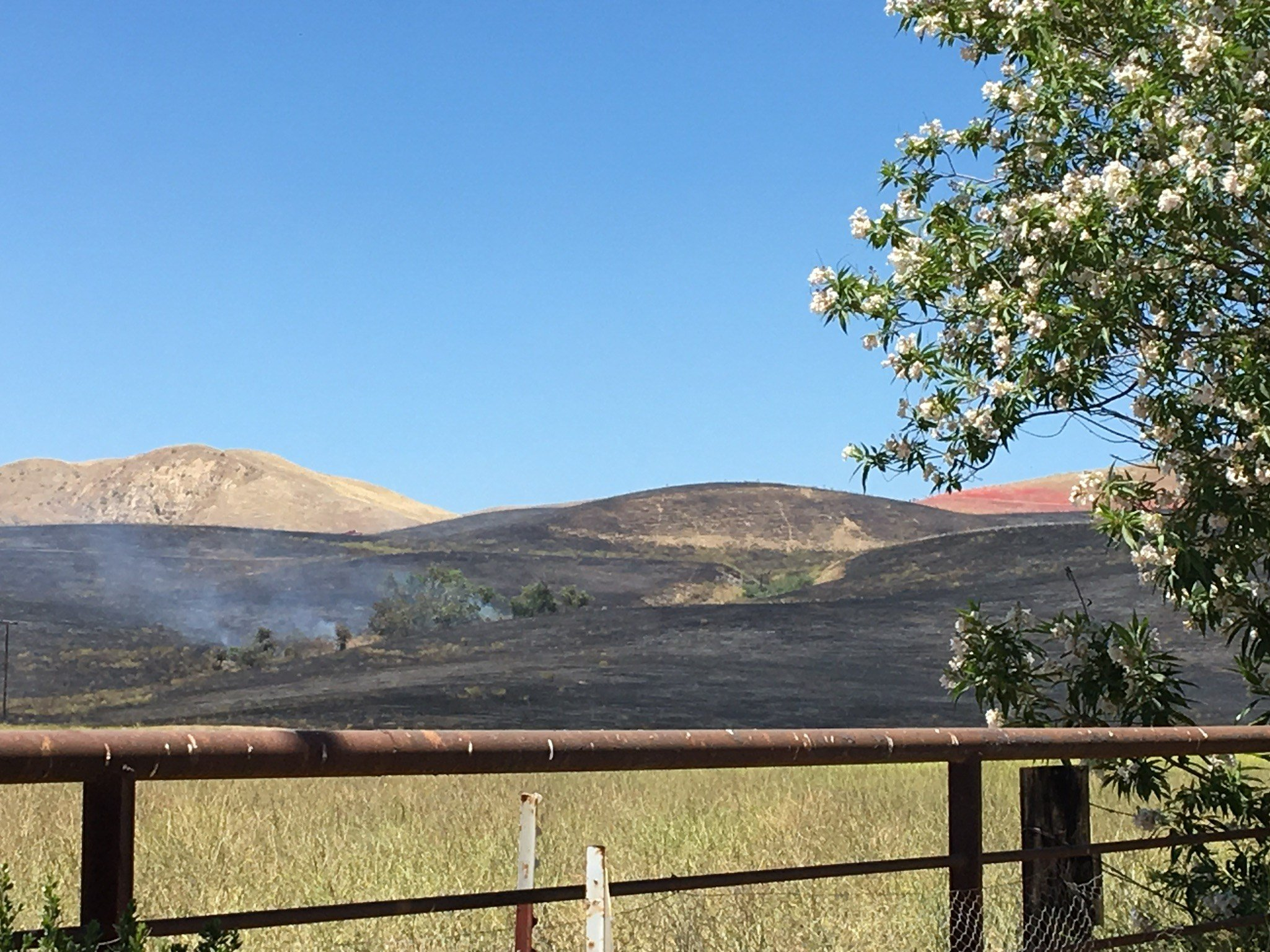 Lucy Fire near Shandon (KSBY photo)