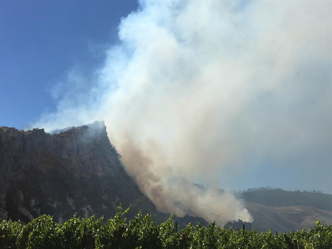 Smoke billows from a vegetation near vineyards east of Santa Maria. (KSBY photo)