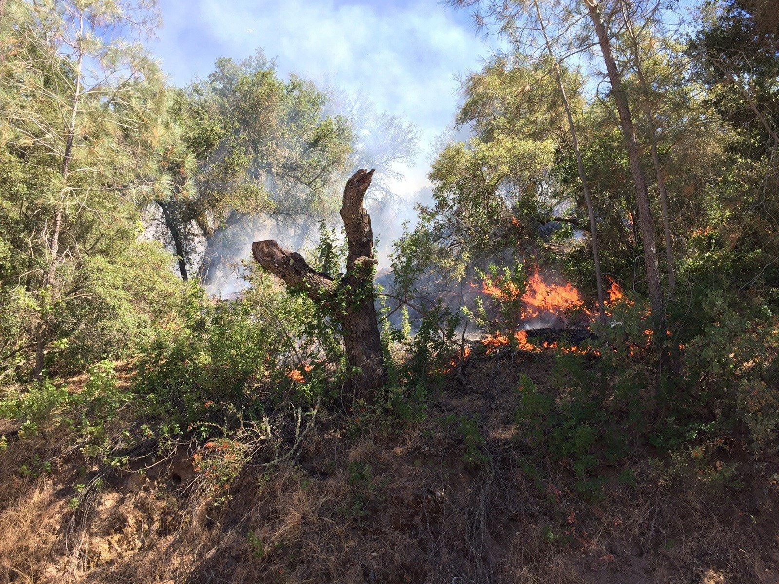 The Hill Fire burns east of Santa Margarita. (KSBY photo)