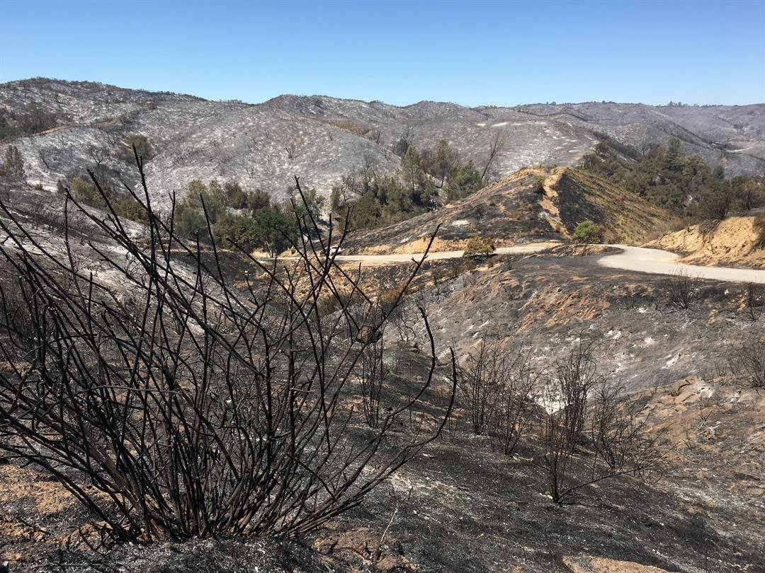 Burned hillsides along Stagecoach Canyon Road. (KSBY photo)