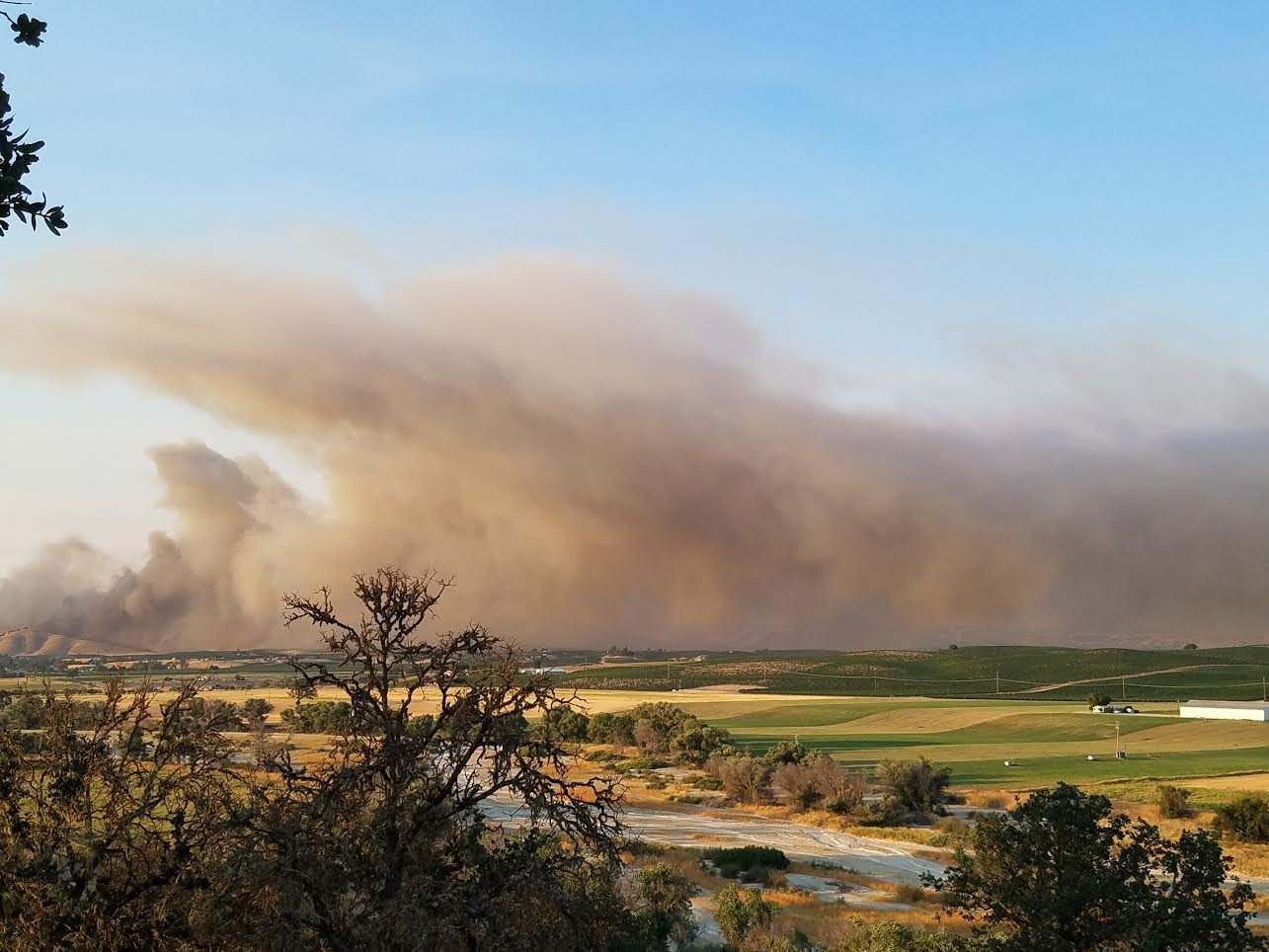 Smoke from the Parkfield Fire. (Photo courtesy Diane Cassidy)