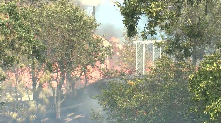 The Stone Fire burns east of Santa Margarita. (KSBY photo)