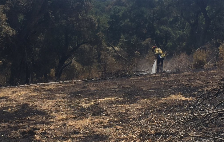 A firefighter works to put out hot spots at the Alamo Fire. (KSBY photo)