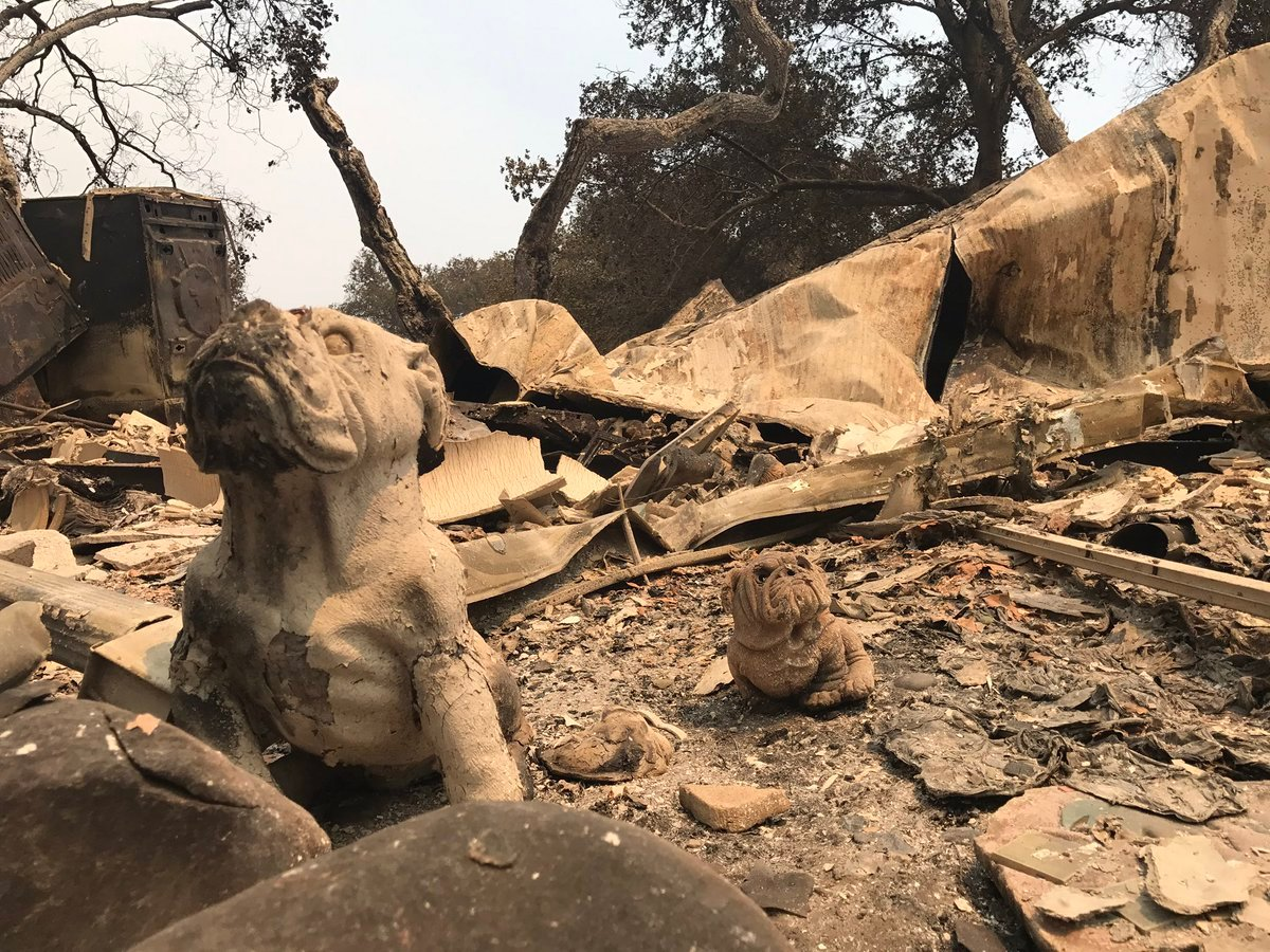 Damage done to Camp Whittier by the Whittier Fire. (Photo: Mike Eliason, SB Co. Fire)