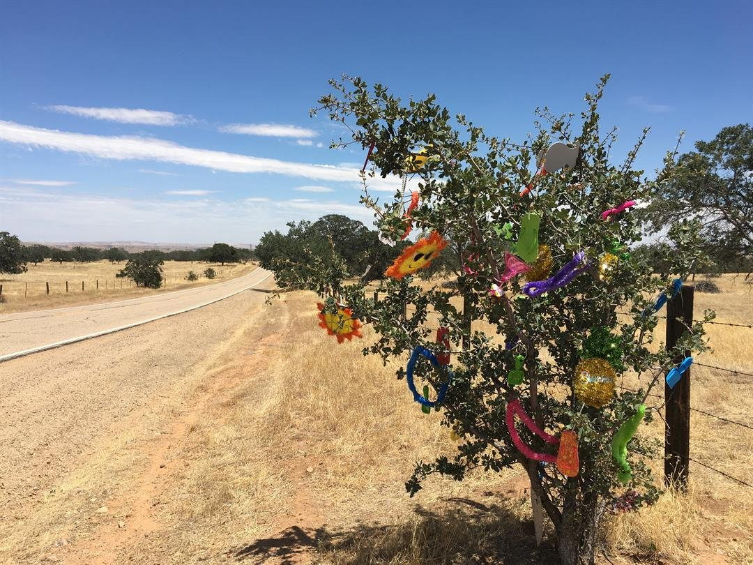 "The ""Happy Tree"" located on the side of Hwy 58 near Red Hill Road is dressed up with seasonal decorations all year long."