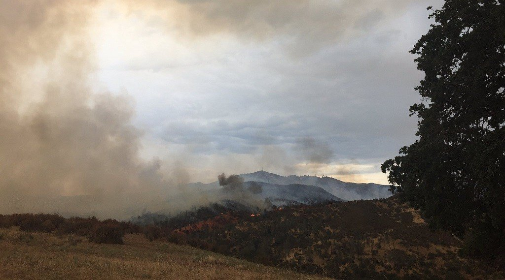 A lightning-sparked fire burns near Highway 58 in eastern San Luis Obispo County. (KSBY photo)