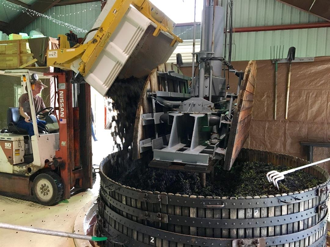 Wine grapes are pressed at Laetitia Vineyard and Winery in Arroyo Grande. (KSBY photo)