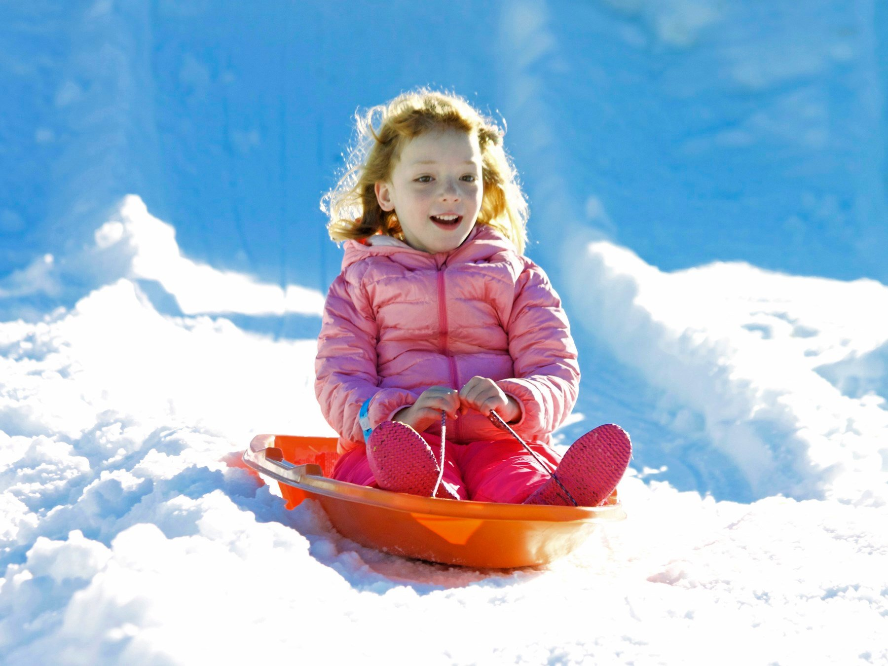 A child sleds in the snow at the 2016 Santa Barbara Zoo Snow Leopard Festival. (Photo courtesy Santa Barbara Zoo)