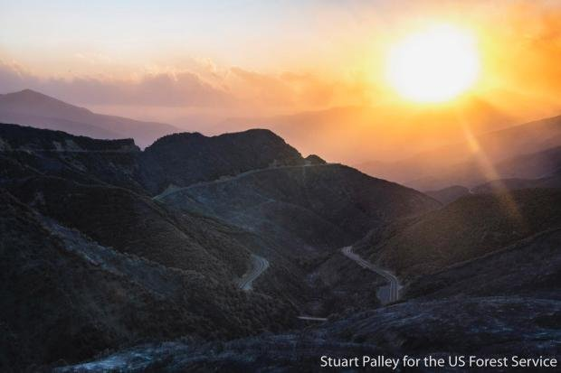 (Courtesy: Stuart Palley for U.S. Forest Service)