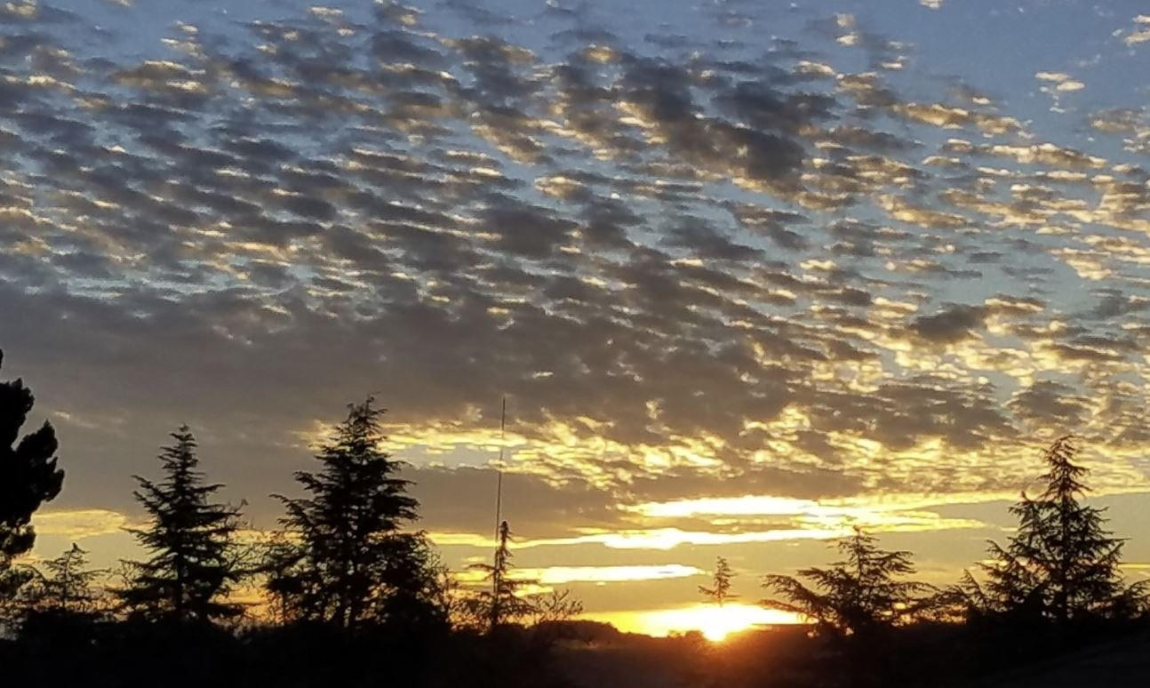 Photo of sunrise in Templeton by Elzy Miller