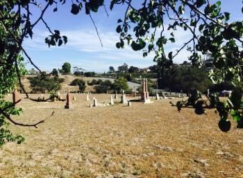 St. Patrick's Cemetery, Arroyo Grande (KSBY)