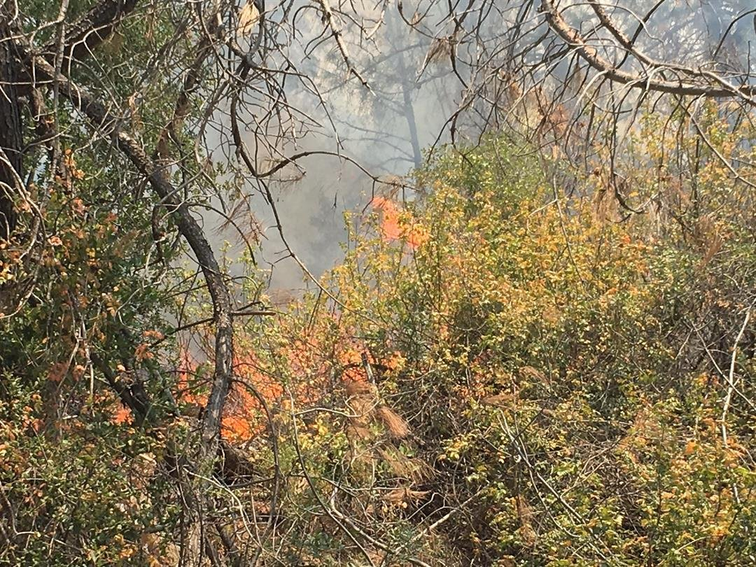 Chimney fire burns 8,000 acres near Lake Nacimiento - KSBY.com